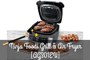 Ninja foodi grill test