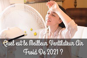 Meilleur Ventilateur Air Froid De 2021